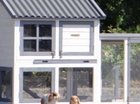 Plexiglas Isolierset für Kaninchenstall Nice mit Auslauf Advance